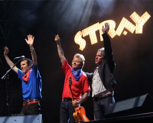 StrayCats6b